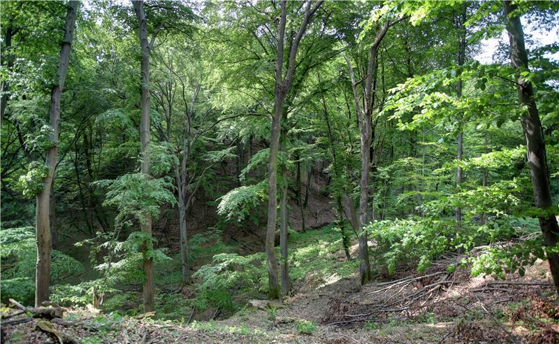Image result for Očuvanje prirode u Hrvatskoj